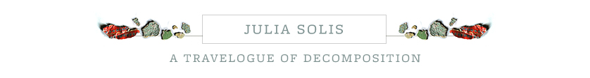 Julia Solis: Travelogue